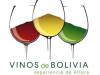 value chain analyses bolivia