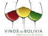 value chain analyses bolivia